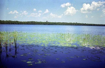 Марийские (Тавские) Озера
