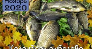 НОЯБРЬ Календарь рыболова