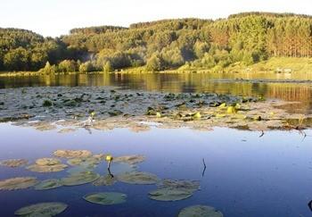 Озеро Аль фото