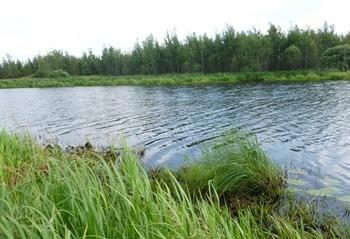 Озеро Бечино фото