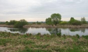 Озеро Гороженное фото