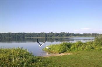 Озеро Заломенье фото