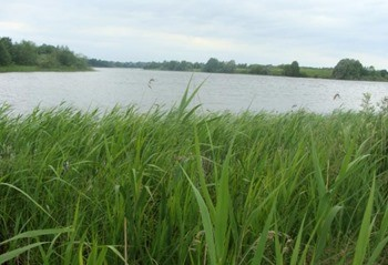 Озеро Кислое фото