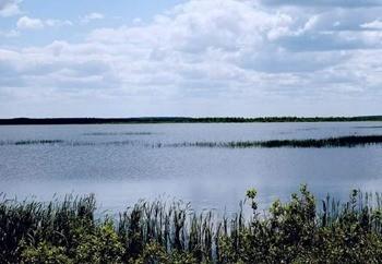 Озеро Кожановское фото
