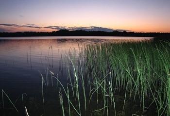 Озеро Локно фото