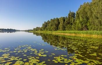 Озеро Мстинское фото