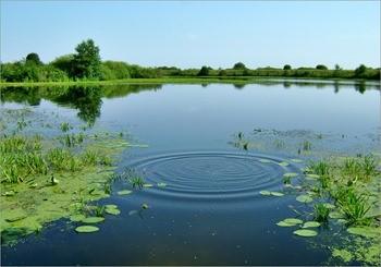 Озеро Рамза фото