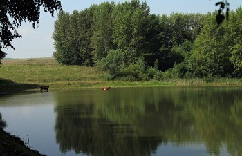 Озеро Сюткюль фото