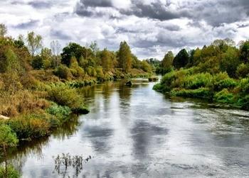 Река Жиздра фото