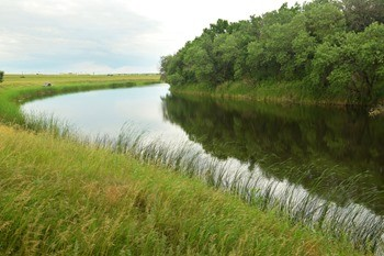 Река Иловля фото