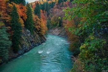 Река Лаба фото