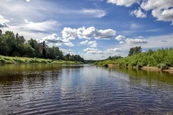 Река Медведица фото