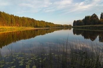 Река Молога фото