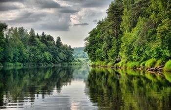 Река Плюсса фото