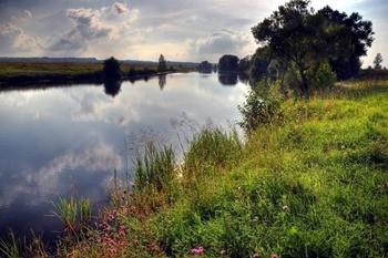 Река Проня фото