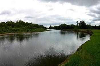Река Сож фото