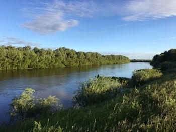 Река Цна фото