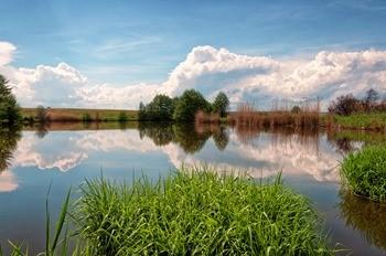 Река Чардым фото