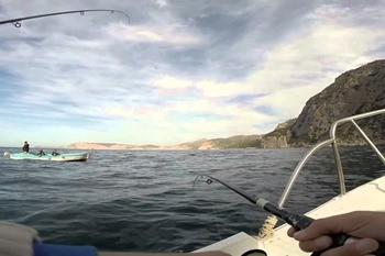 Рыбалка в Балаклаве фото