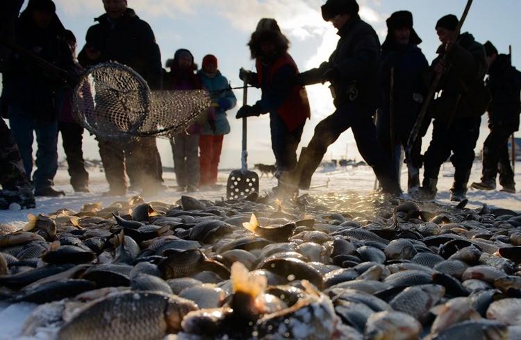 Рыбалка в Республике Саха (Якутия)