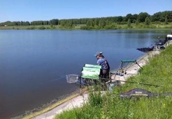 Рыбинский пруд фото