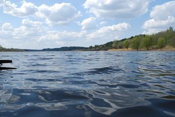 река Сунжа фото