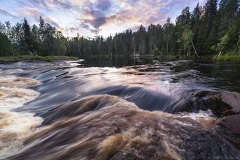 река Шуя фото