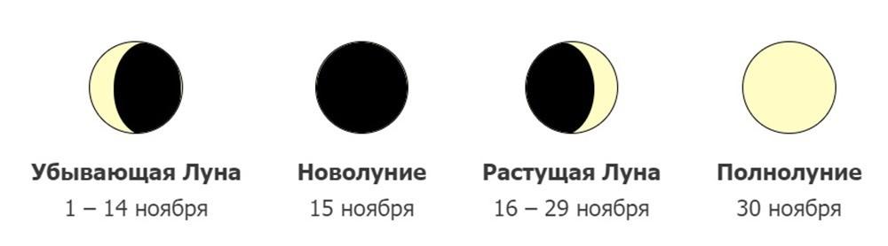 фазы луны на ноябрь 2020
