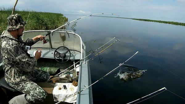 ВИДЕО: 14 кг за 4 часа. Рыбалка с лодки на спиннинги и удочку. Ловля карася, сазана, язя, окуня