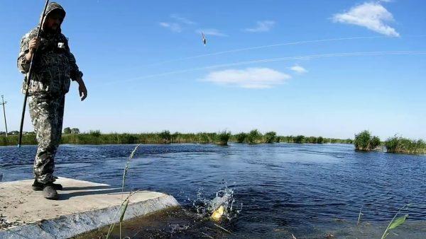 ВИДЕО: 8 кг на 5 червей за 3 часа. Рыбалка на поплавок. КАРАСЬ Видео 2020. Ловля крупного карася летом!