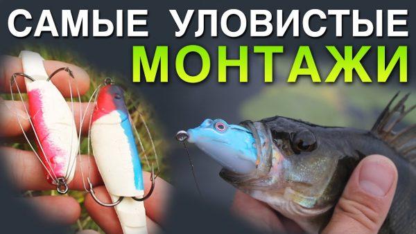 ВИДЕО: Самые УЛОВИСТЫЕ МОНТАЖИ для ловли щуки в траве на спиннинг от Ивана Мазовка
