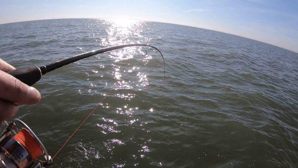 ВИДЕО: Рыбалка на судака с лодки в сентябре! Клюет на мандулу