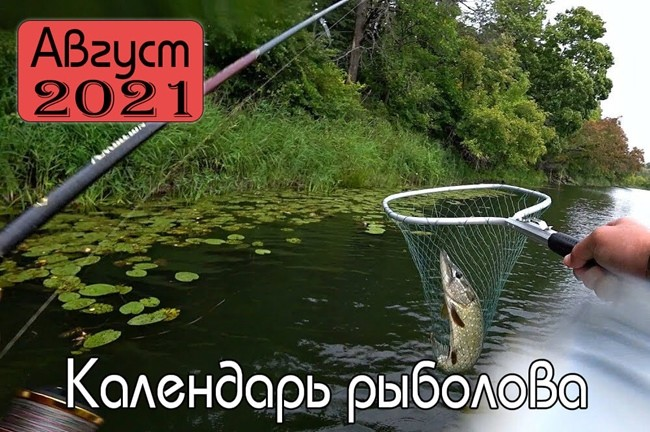АВГУСТ 2021 Календарь рыболова