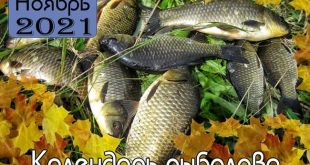 НОЯБРЬ 2021 Календарь рыболова