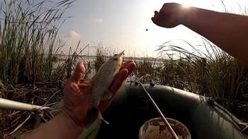 Рыбалка в сентябре на карася