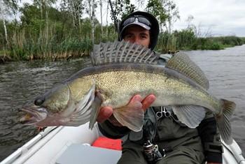 Рыбалка в сентябре на судака