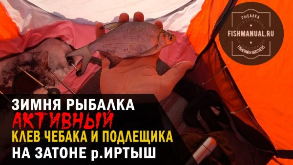 "ВИДЕО: Активный клев чебака и подлещика на Иртыше, или зимняя рыбалка на затоне ""Лампочка""."