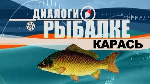 ВИДЕО: Диалоги о рыбалке - Ужение карася