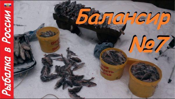 ВИДЕО: Много окуня зимой не бывает. Ловля хорошего окуня на балансир Rapala - жаба
